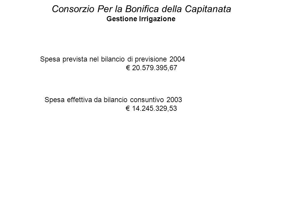 Consorzio Per la Bonifica della Capitanata Gestione Irrigazione Spesa prevista nel bilancio di previsione 2004 € 20.579.395,67 Spesa effettiva da bila