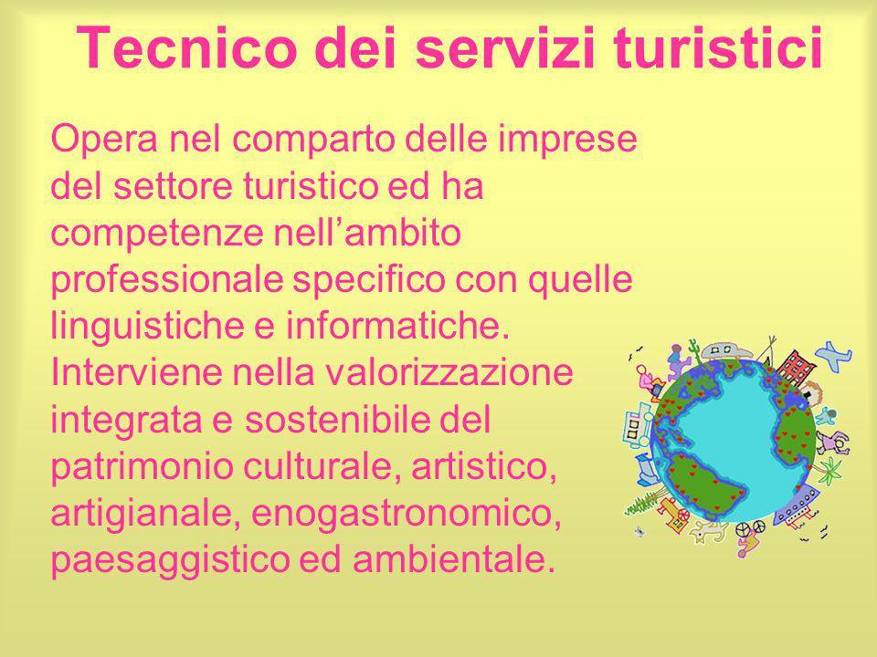 Tecnico dei servizi turistici Opera nel comparto delle imprese del settore turistico ed ha competenze nell'ambito professionale specifico con quelle l