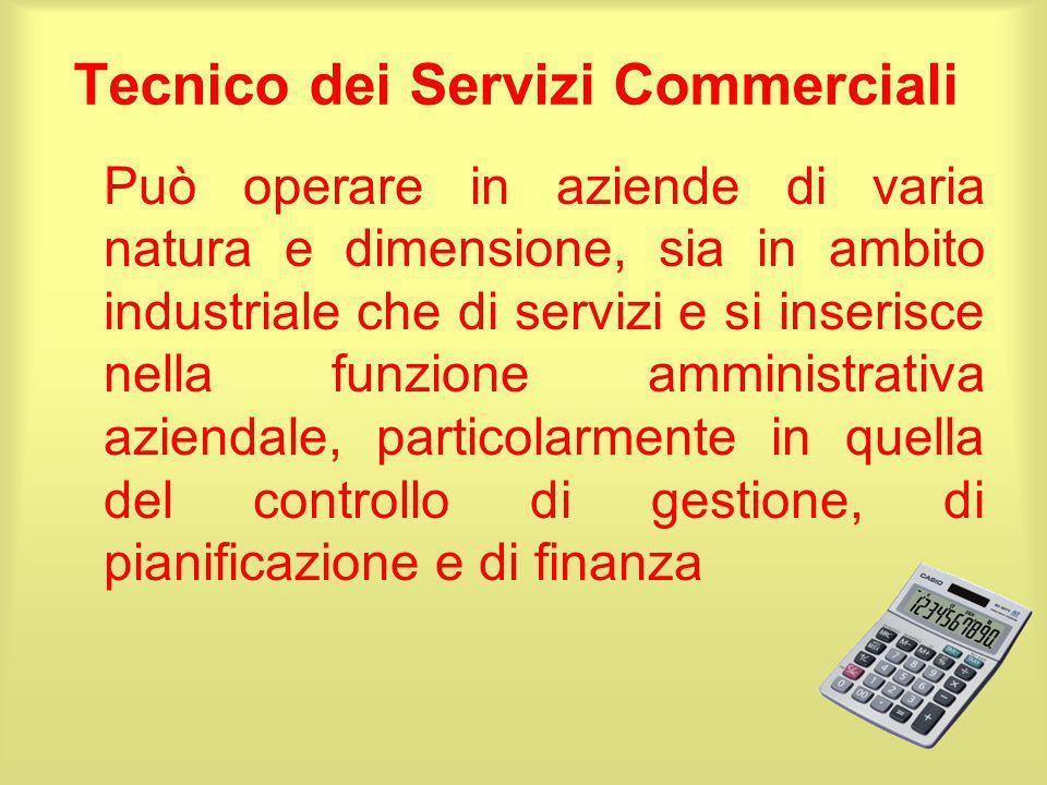 Tecnico dei Servizi Commerciali Può operare in aziende di varia natura e dimensione, sia in ambito industriale che di servizi e si inserisce nella fun