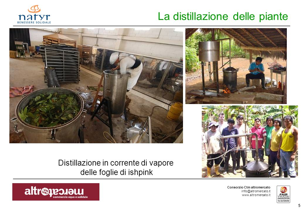 Consorzio Ctm altromercato info@altromercato.it www.altromercato.it 5 La distillazione delle piante Distillazione in corrente di vapore delle foglie di ishpink