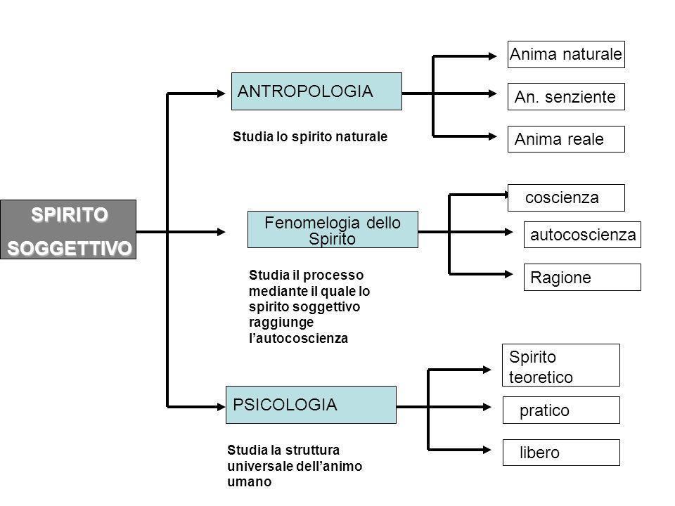 quantità misura ANTROPOLOGIA Studia lo spirito naturale Anima naturale Fenomelogia dello Spirito Studia il processo mediante il quale lo spirito soggettivo raggiunge l'autocoscienza PSICOLOGIA Studia la struttura universale dell'animo umano An.