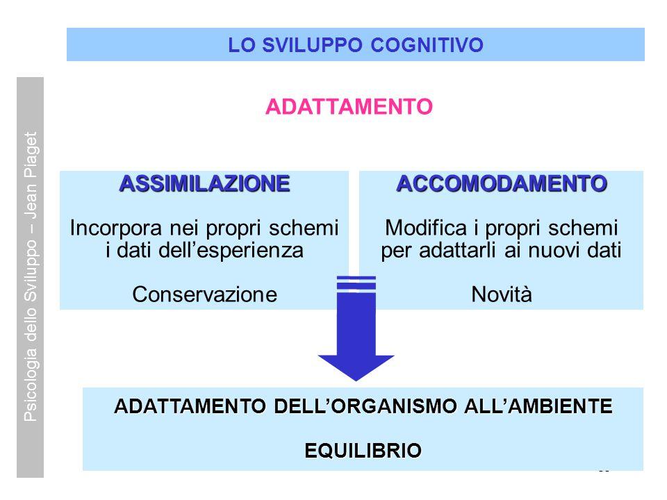 11 LO SVILUPPO COGNITIVO ASSIMILAZIONE Incorpora nei propri schemi i dati dell'esperienza Conservazione ADATTAMENTO DELL'ORGANISMO ALL'AMBIENTE EQUILI