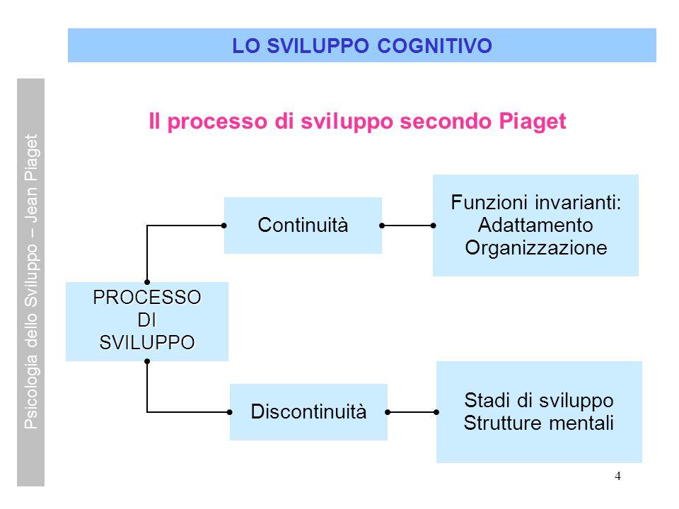 4 LO SVILUPPO COGNITIVO Continuità Funzioni invarianti: Adattamento Organizzazione PROCESSODISVILUPPO Discontinuità Stadi di sviluppo Strutture mental