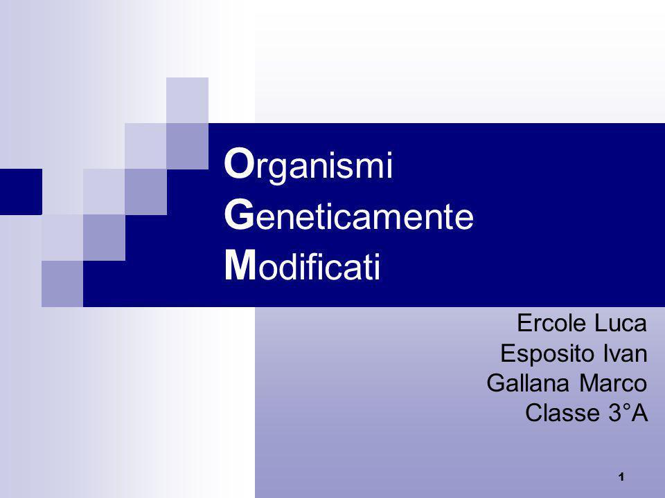 1 O rganismi G eneticamente M odificati Ercole Luca Esposito Ivan Gallana Marco Classe 3°A