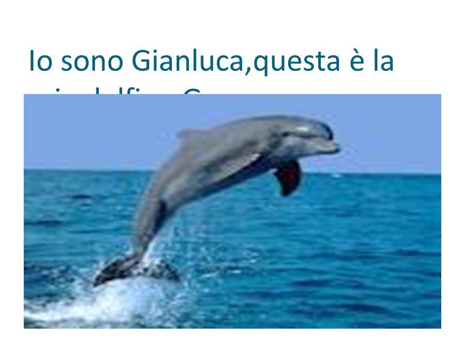 Io sono Gianluca,questa è la mia delfina Grace.