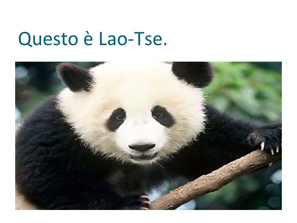 Questo è Lao-Tse.
