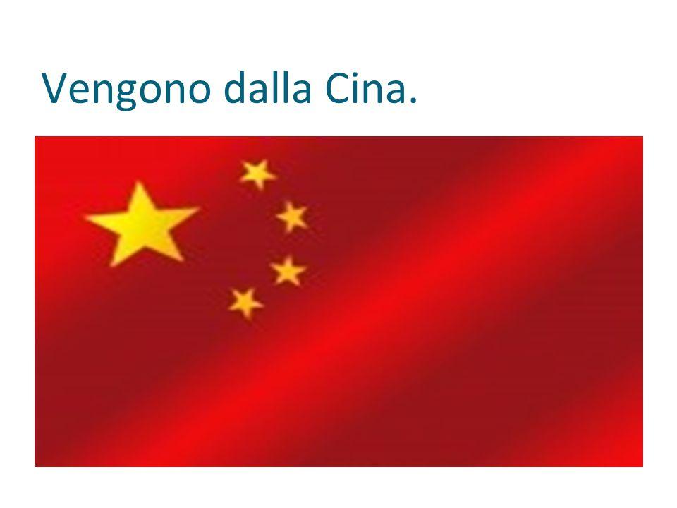 Vengono dalla Cina.