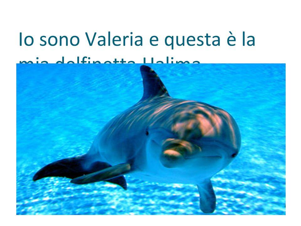 Io sono Valeria e questa è la mia delfinetta Halima.