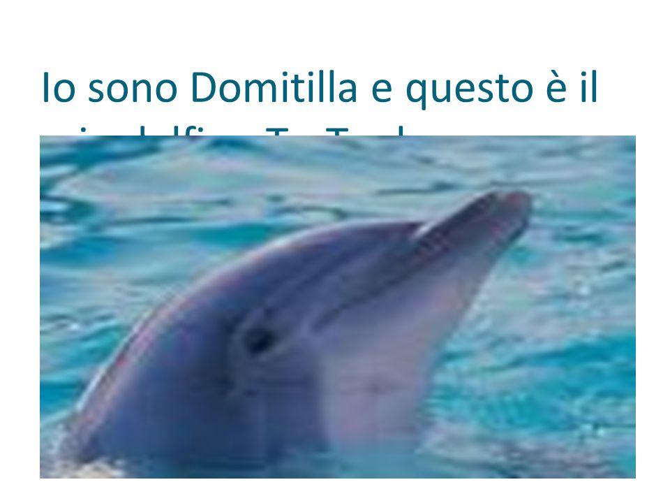 Io sono Domitilla e questo è il mio delfino Ta-Tanka.