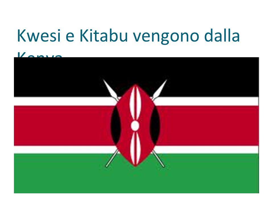 Kwesi e Kitabu vengono dalla Kenya.