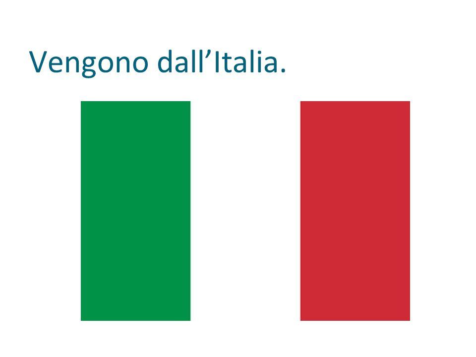 Vengono dall'Italia.