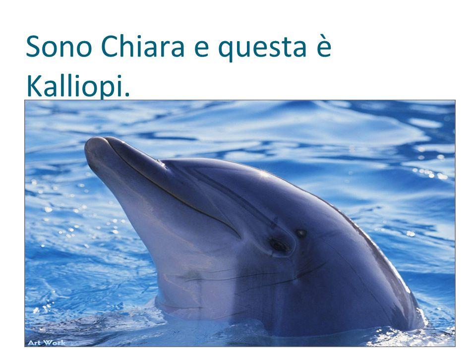Io sono Lucrezia e questa è Oana, la mia delfinetta.