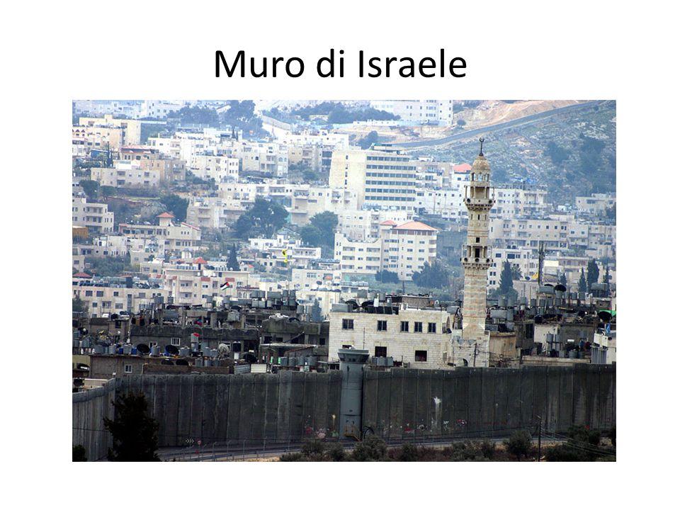 Muro di Israele