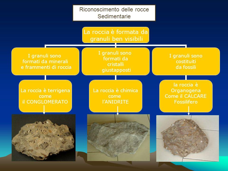 Le rocce Sedimentarie Sono le rocce che derivano dai processi di erosione fisica e chimica subiti da tutti i tipi di rocce presenti sulla superficie t