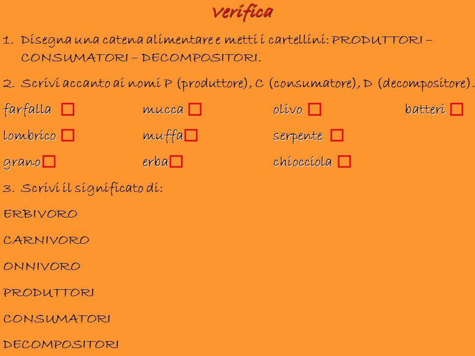 Verifica 1.Disegna una catena alimentare e metti i cartellini: PRODUTTORI – CONSUMATORI – DECOMPOSITORI. 2.Scrivi accanto ai nomi P (produttore), C (c