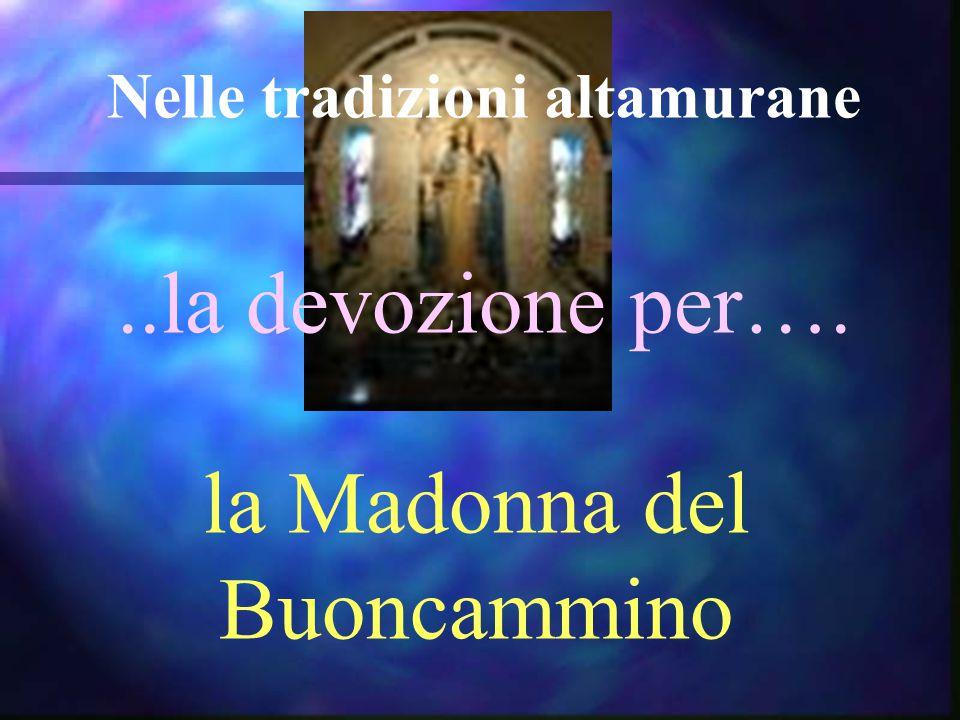 Nelle tradizioni altamurane..la devozione per…. la Madonna del Buoncammino