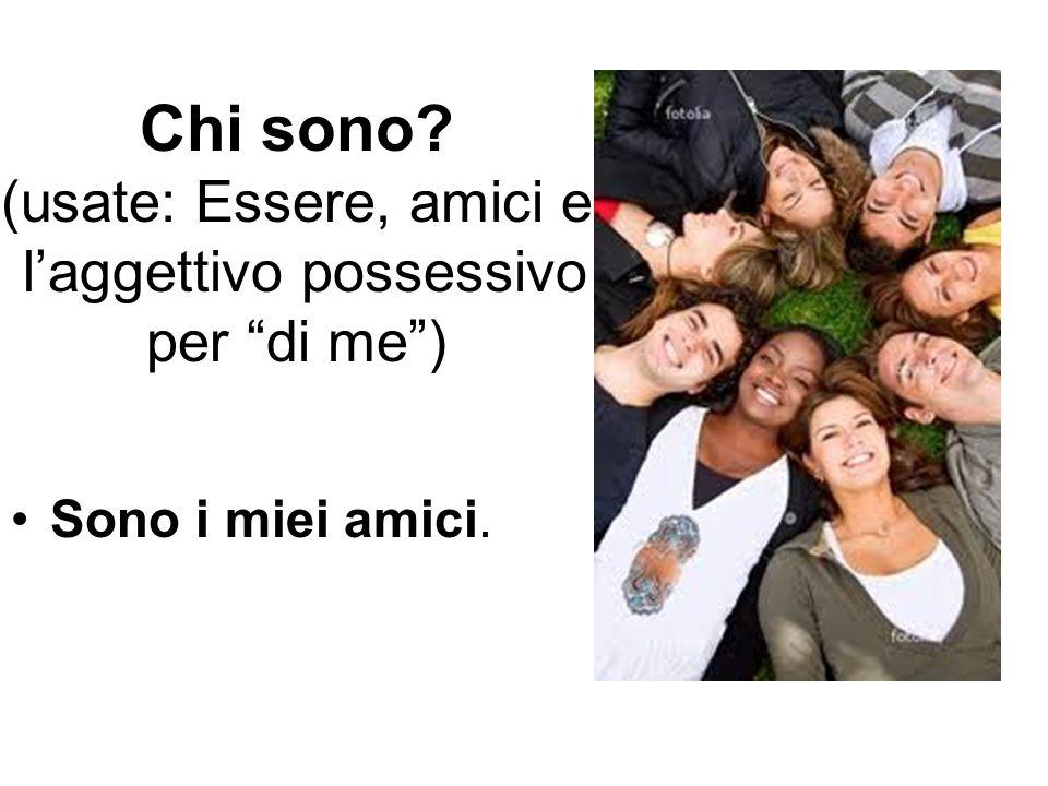 """Chi sono? (usate: Essere, amici e l'aggettivo possessivo per """"di me"""") Sono i miei amici."""