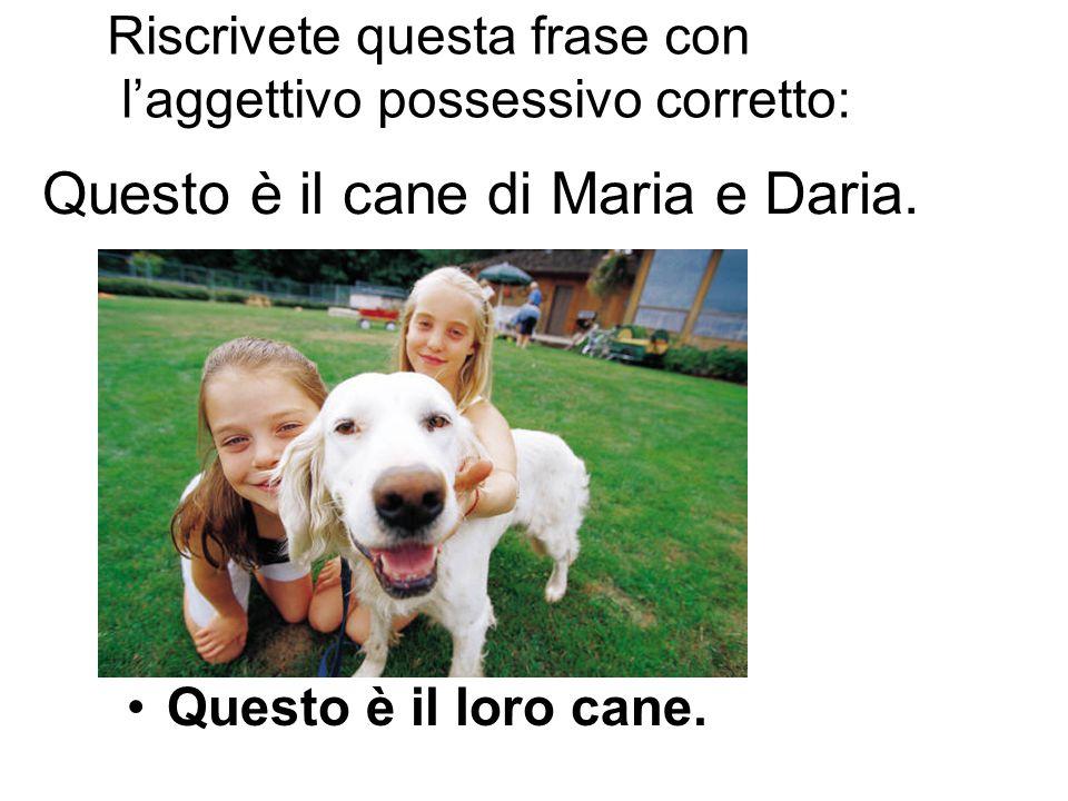 Questo è il cane di Maria e Daria. Questo è il loro cane. Riscrivete questa frase con l'aggettivo possessivo corretto: