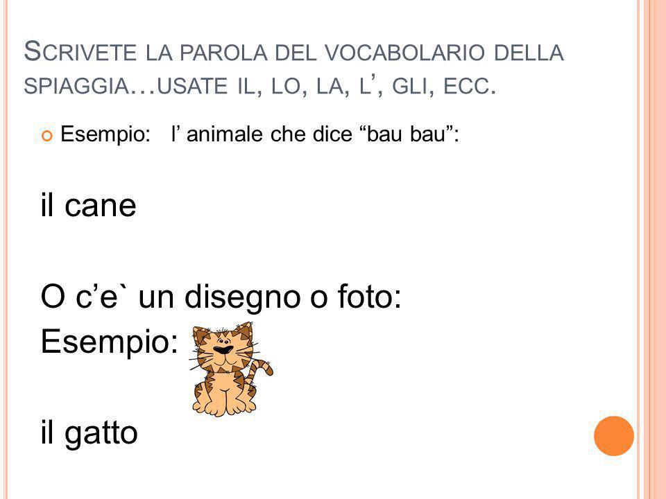 """S CRIVETE LA PAROLA DEL VOCABOLARIO DELLA SPIAGGIA … USATE IL, LO, LA, L ', GLI, ECC. Esempio: l' animale che dice """"bau bau"""": il cane O c'e` un disegn"""