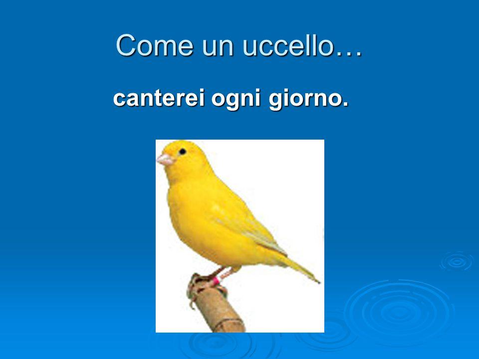 Come un uccello… canterei ogni giorno.