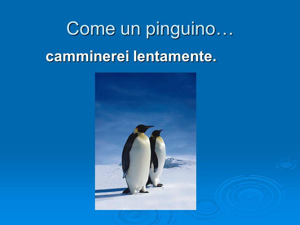 Come un pinguino… camminerei lentamente.