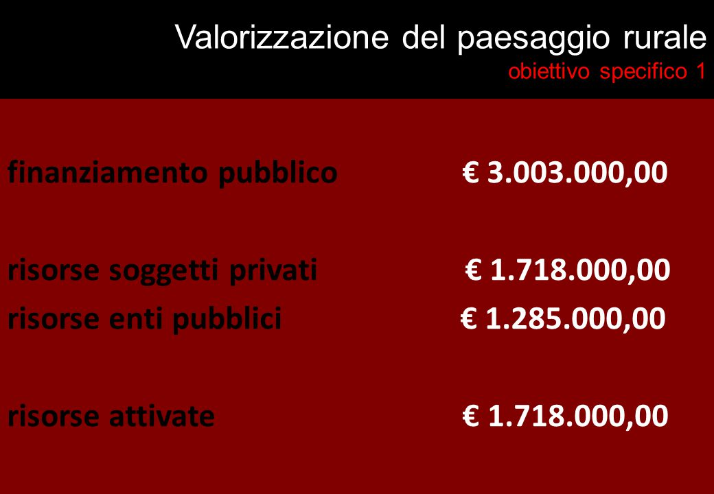 Valorizzazione del paesaggio rurale obiettivo specifico 1 finanziamento pubblico € 3.003.000,00 risorse soggetti privati € 1.718.000,00 risorse enti pubblici € 1.285.000,00 risorse attivate € 1.718.000,00