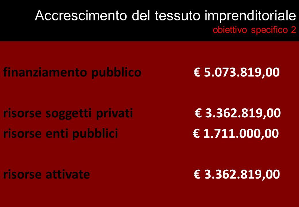 Accrescimento del tessuto imprenditoriale obiettivo specifico 2 finanziamento pubblico € 5.073.819,00 risorse soggetti privati € 3.362.819,00 risorse enti pubblici € 1.711.000,00 risorse attivate € 3.362.819,00