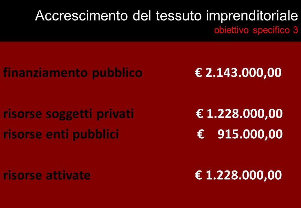 Accrescimento del tessuto imprenditoriale obiettivo specifico 3 finanziamento pubblico € 2.143.000,00 risorse soggetti privati € 1.228.000,00 risorse enti pubblici € 915.000,00 risorse attivate € 1.228.000,00