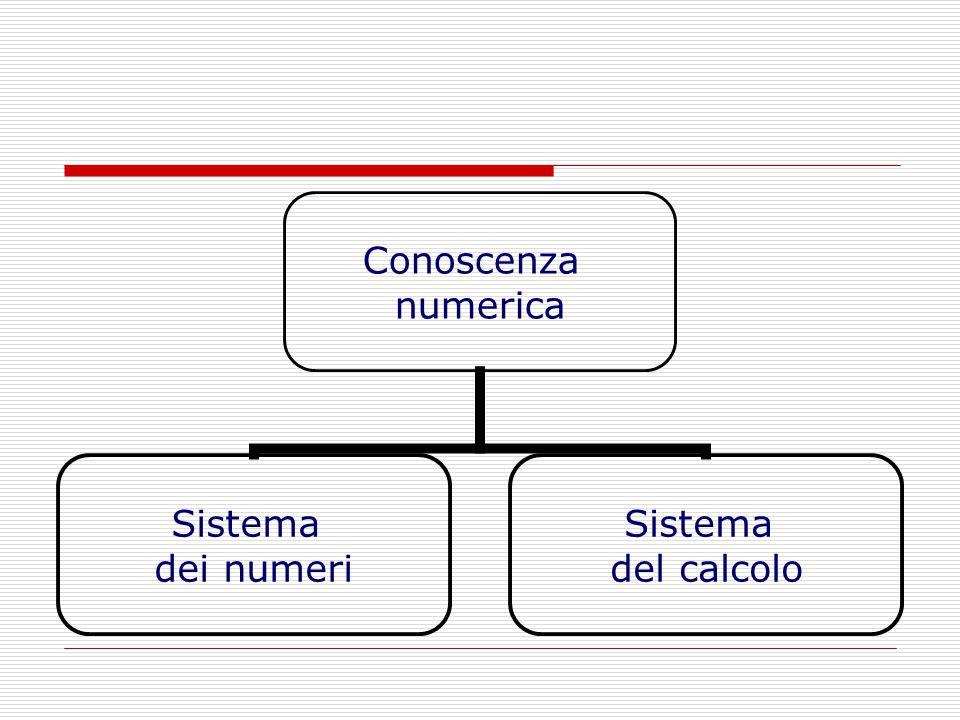 Conoscenza numerica Sistema dei numeri Sistema del calcolo