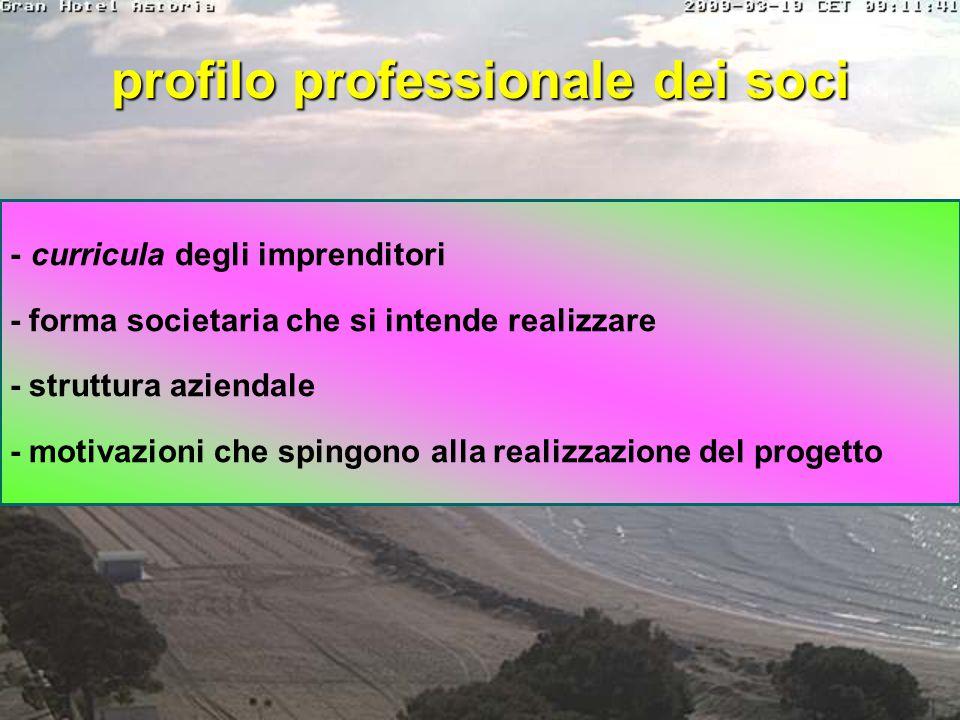 Executive Summary - descrizione sintetica del progetto con lo scopo di indicare e comunicare i punti fondamentali: modalità funzionamento del prodotto