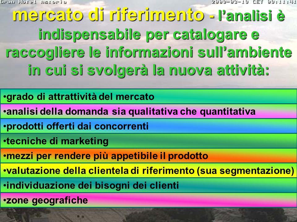 profilo professionale dei soci - curricula degli imprenditori - forma societaria che si intende realizzare - struttura aziendale - motivazioni che spi