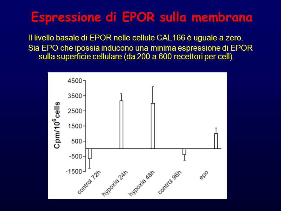 Espressione di EPOR sulla membrana Il livello basale di EPOR nelle cellule CAL166 è uguale a zero.