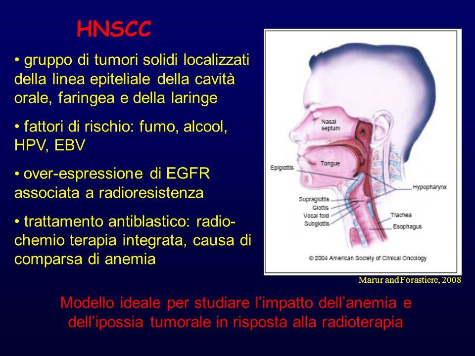 Marur and Forastiere, 2008 HNSCC gruppo di tumori solidi localizzati della linea epiteliale della cavità orale, faringea e della laringe fattori di rischio: fumo, alcool, HPV, EBV over-espressione di EGFR associata a radioresistenza trattamento antiblastico: radio- chemio terapia integrata, causa di comparsa di anemia Modello ideale per studiare l'impatto dell'anemia e dell'ipossia tumorale in risposta alla radioterapia