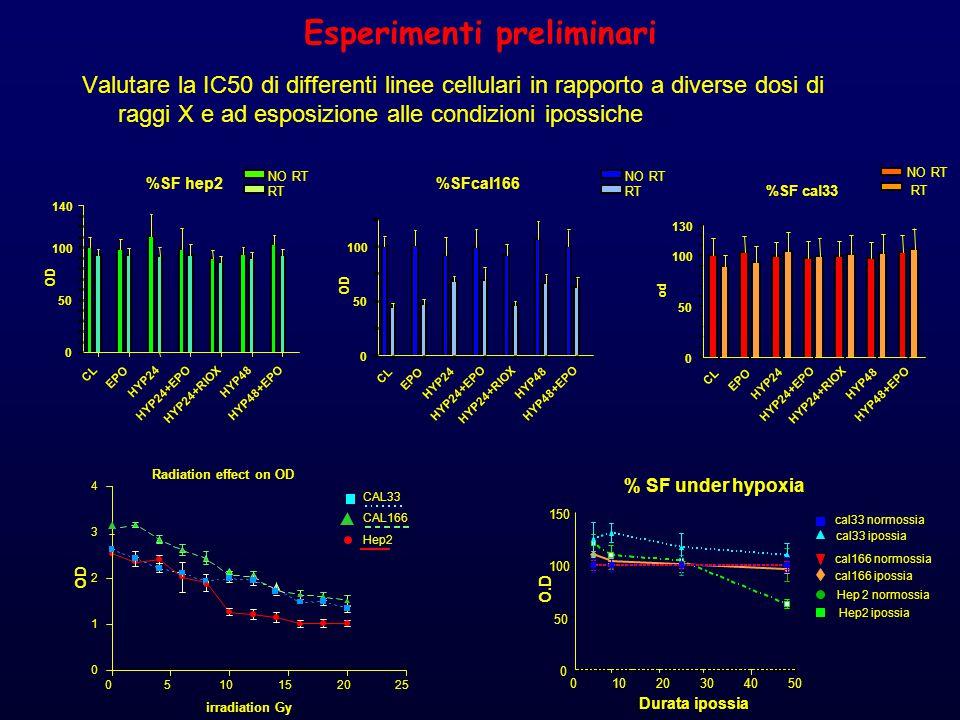 Esperimenti preliminari Valutare la IC50 di differenti linee cellulari in rapporto a diverse dosi di raggi X e ad esposizione alle condizioni ipossiche