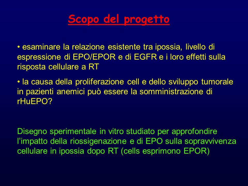Scopo del progetto esaminare la relazione esistente tra ipossia, livello di espressione di EPO/EPOR e di EGFR e i loro effetti sulla risposta cellulare a RT la causa della proliferazione cell e dello sviluppo tumorale in pazienti anemici può essere la somministrazione di rHuEPO.