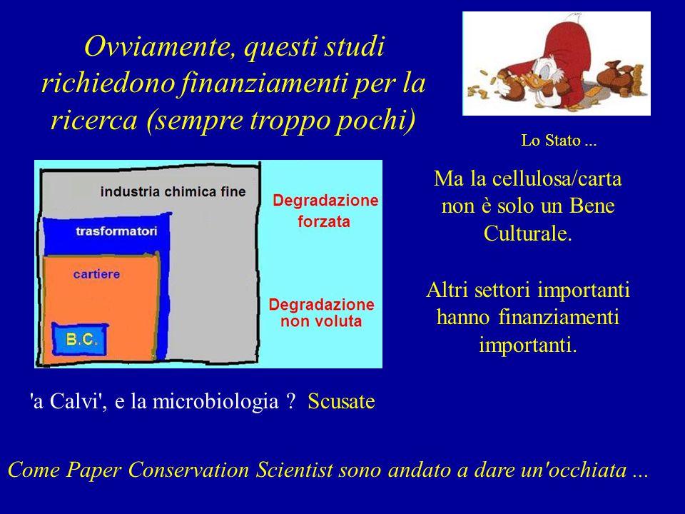 costi della ricerca Ovviamente, questi studi richiedono finanziamenti per la ricerca (sempre troppo pochi) Ma la cellulosa/carta non è solo un Bene Culturale.