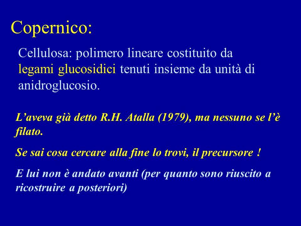 Copernico: Cellulosa: polimero lineare costituito da legami glucosidici tenuti insieme da unità di anidroglucosio. L'aveva già detto R.H. Atalla (1979