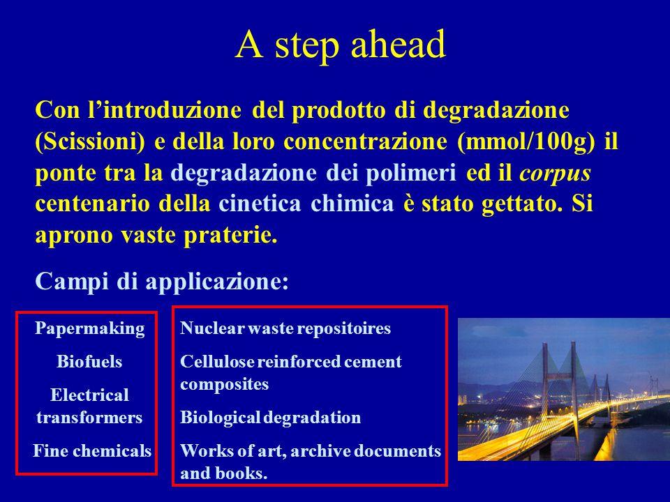 A step ahead Con l'introduzione del prodotto di degradazione (Scissioni) e della loro concentrazione (mmol/100g) il ponte tra la degradazione dei poli