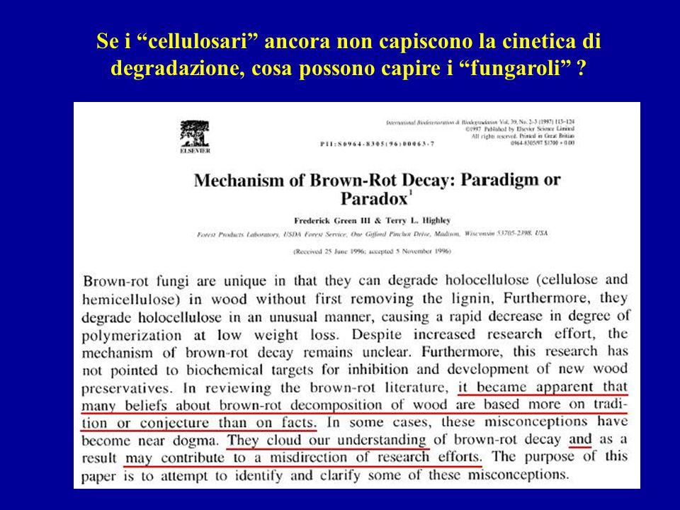 """Se i """"cellulosari"""" ancora non capiscono la cinetica di degradazione, cosa possono capire i """"fungaroli"""" ?"""