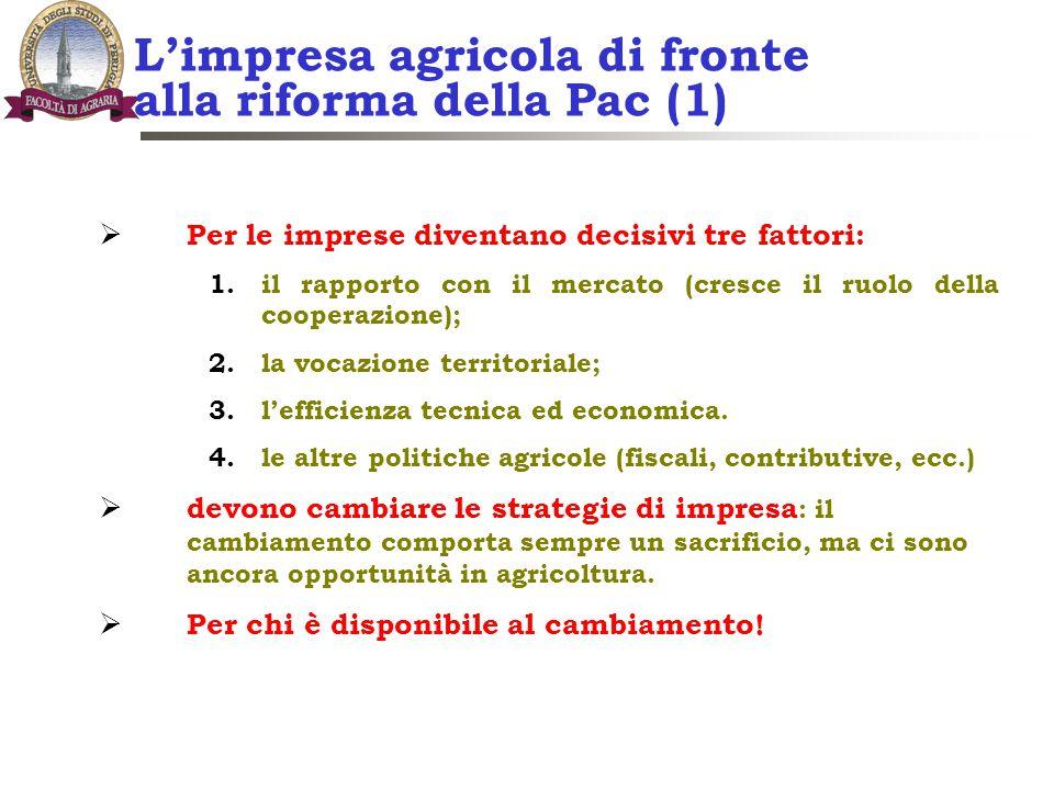 L'impresa agricola di fronte alla riforma della Pac (1)  Per le imprese diventano decisivi tre fattori: 1.il rapporto con il mercato (cresce il ruolo