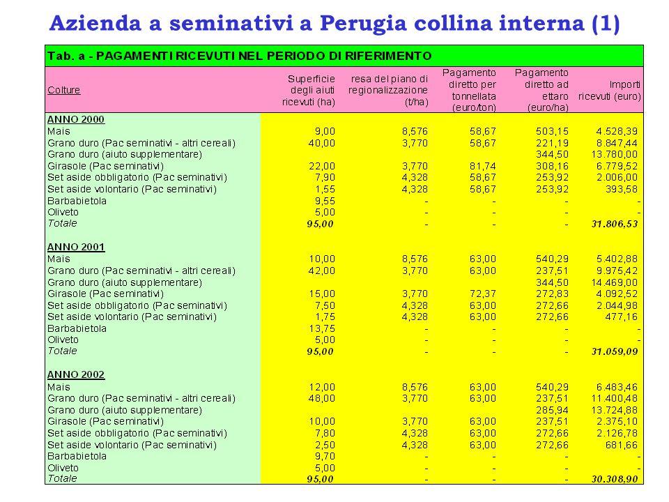 Azienda a seminativi a Perugia collina interna (2)