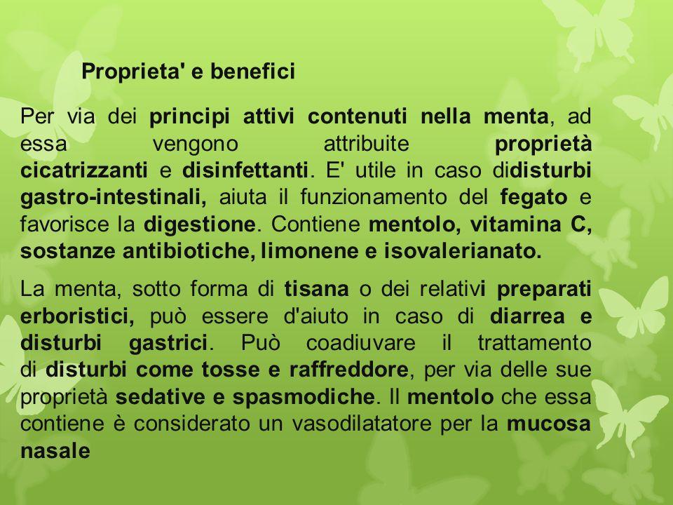 Proprieta' e benefici Per via dei principi attivi contenuti nella menta, ad essa vengono attribuite proprietà cicatrizzanti e disinfettanti. E' utile