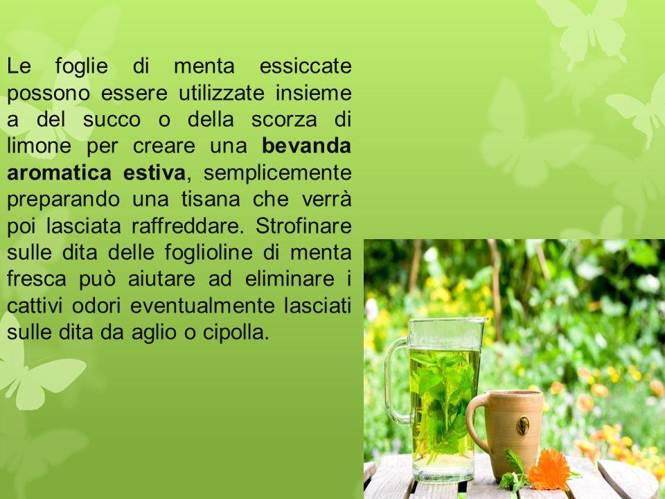 Le foglie di menta essiccate possono essere utilizzate insieme a del succo o della scorza di limone per creare una bevanda aromatica estiva, semplicem