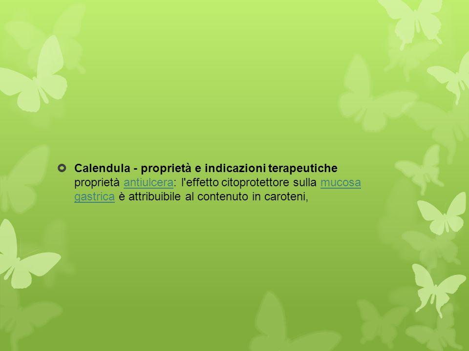  Calendula - proprietà e indicazioni terapeutiche proprietà antiulcera: l'effetto citoprotettore sulla mucosa gastrica è attribuibile al contenuto in