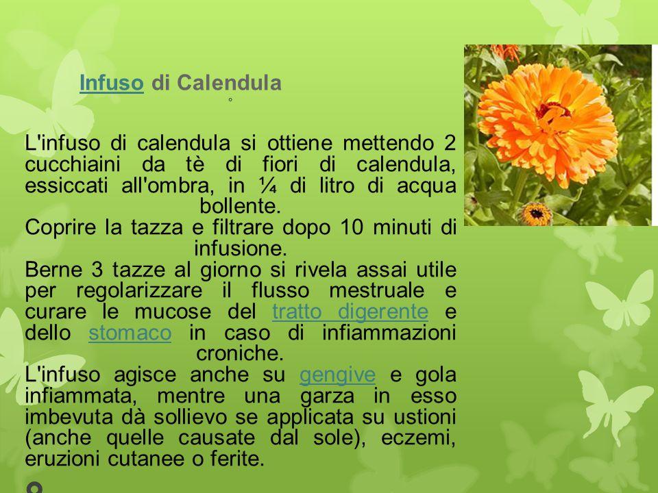 InfusoInfuso di Calendula L'infuso di calendula si ottiene mettendo 2 cucchiaini da tè di fiori di calendula, essiccati all'ombra, in ¼ di litro di ac