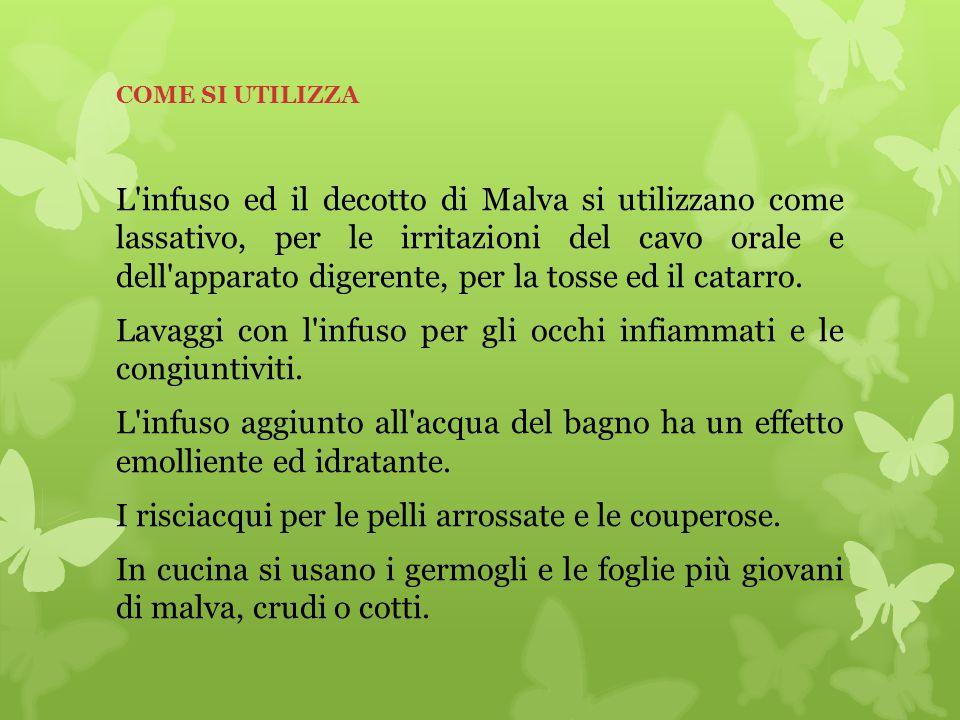 COME SI UTILIZZA L'infuso ed il decotto di Malva si utilizzano come lassativo, per le irritazioni del cavo orale e dell'apparato digerente, per la tos