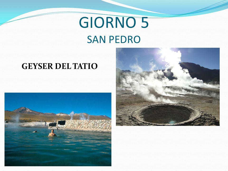 GIORNO 5 SAN PEDRO GEYSER DEL TATIO