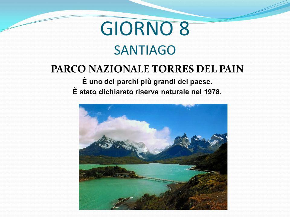 GIORNO 8 SANTIAGO PARCO NAZIONALE TORRES DEL PAIN È uno dei parchi più grandi del paese.