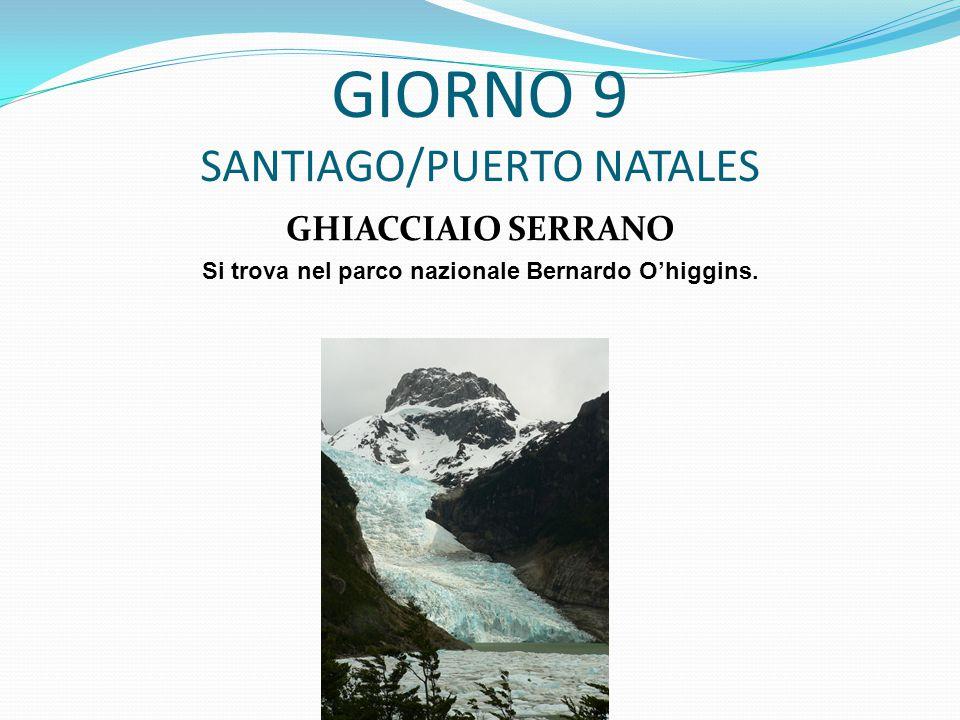 GIORNO 9 SANTIAGO/PUERTO NATALES GHIACCIAIO SERRANO Si trova nel parco nazionale Bernardo O'higgins.
