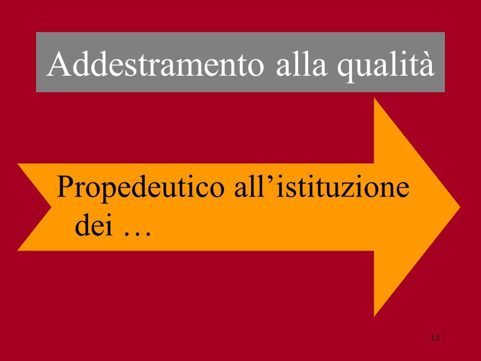 13 Addestramento alla qualità Propedeutico all'istituzione dei …